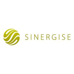 Sinergise
